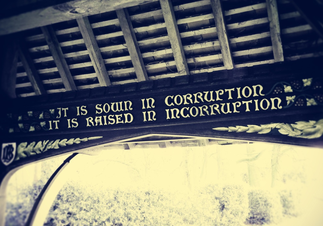 """It is sown in corruption, it is raised in incorruption..."" (Photo: Edward Parnell)"