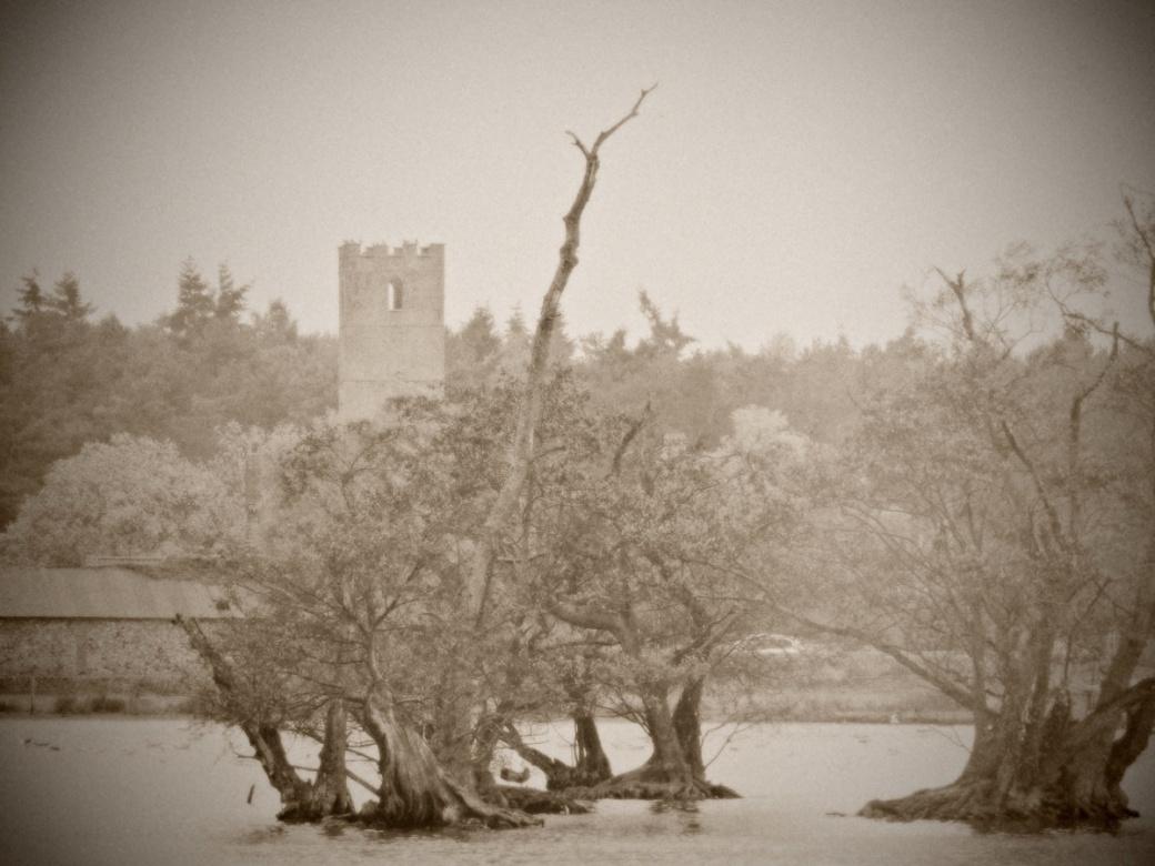 mrj_across-lake