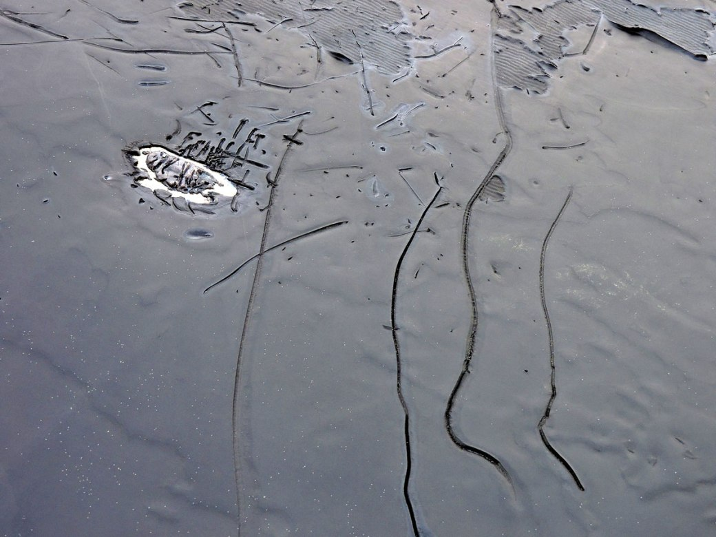 whaleskin-runes_LO